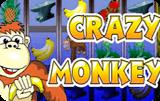 Crazy Monkey – онлайн игровой слот с казино Вулкан