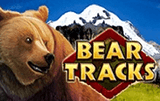 Bear Tracks: игровой механизм онлайн